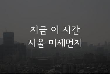 http://data.seoul.go.kr/opendata/board/10005/seoulmise_main.JPG