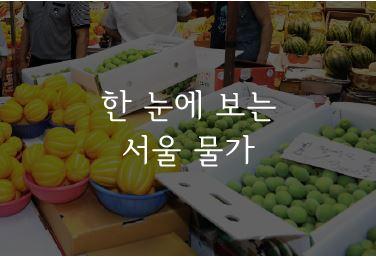 http://data.seoul.go.kr/opendata/board/10005/seoulmulga_main.JPG